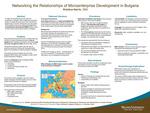 Networking the Relationships of Microenterprise Development in Bulgaria