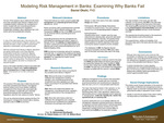Modeling Risk Management in Banks: Examining Why Banks Fail by Daniel O. Okehi