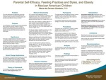 Parental Self-Efficacy, Feeding Practices and Styles, and Obesity in Mexican American Children