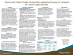 Community Public-Private Partnership Leadership Synergy In Tanzania