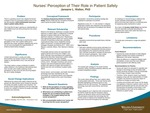 Nurses' Perception of Their Role in Patient Safety